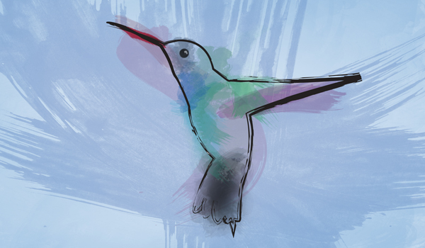 Hummingbird – What Google's New Search Algorithm Means for Business