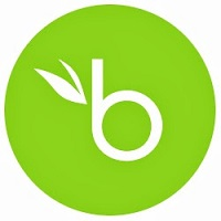BambooHR software logo