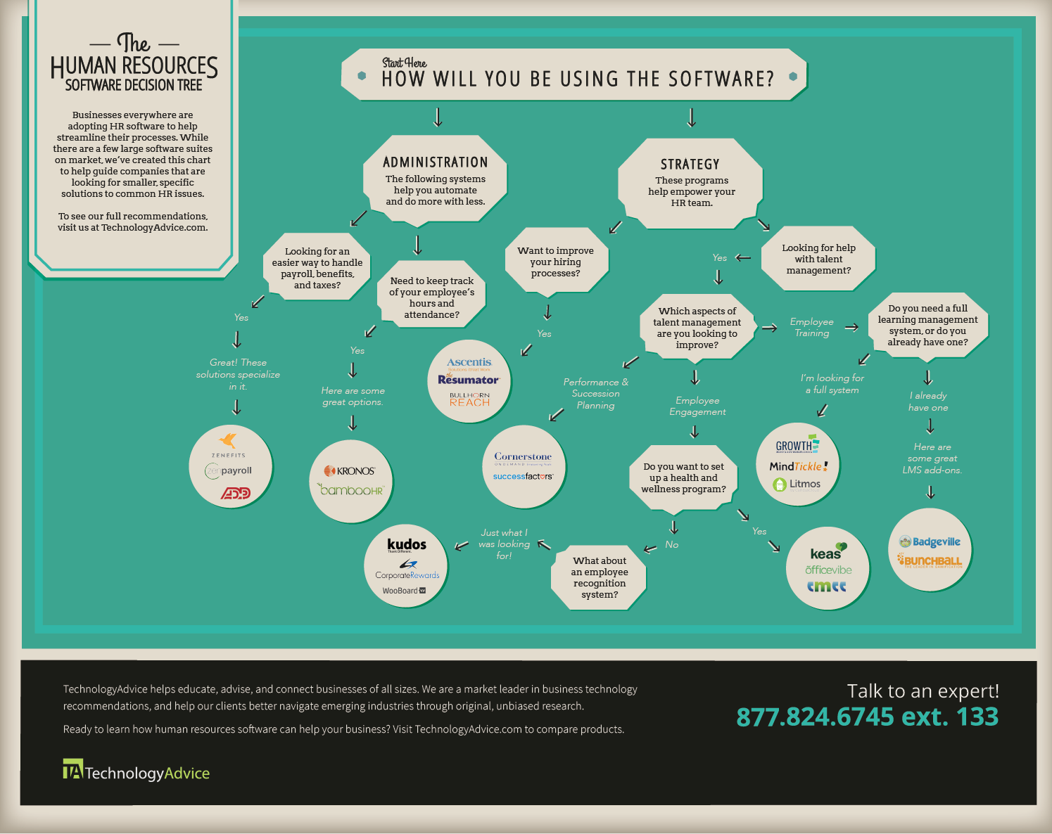 Human Resource Software Decision Tree Infographic